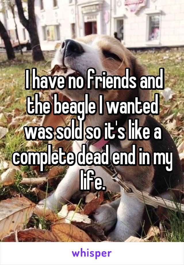 I have no friends and the beagle I wanted was sold so it's like a complete dead end in my life.
