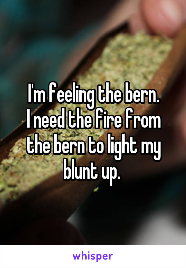 I'm feeling the bern. I need the fire from the bern to light my blunt up.