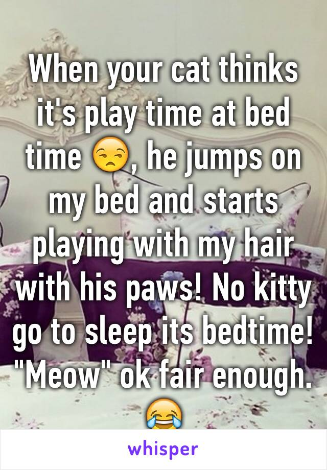 """When your cat thinks it's play time at bed time 😒, he jumps on my bed and starts playing with my hair with his paws! No kitty go to sleep its bedtime! """"Meow"""" ok fair enough. 😂"""