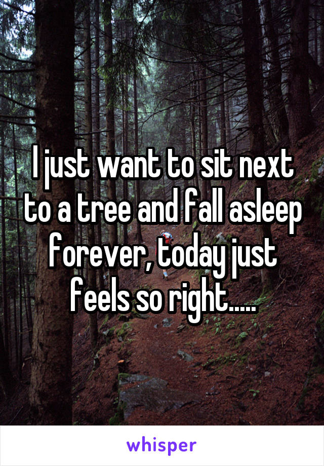 I just want to sit next to a tree and fall asleep forever, today just feels so right.....