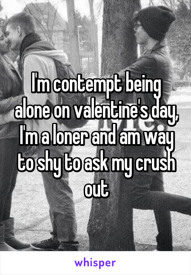 I'm contempt being alone on valentine's day, I'm a loner and am way to shy to ask my crush out