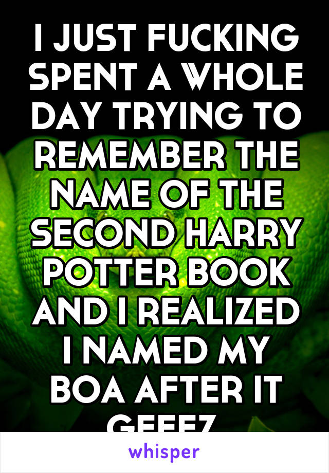 I JUST FUCKING SPENT A WHOLE DAY TRYING TO REMEMBER THE NAME OF THE SECOND HARRY POTTER BOOK AND I REALIZED I NAMED MY BOA AFTER IT GEEEZ