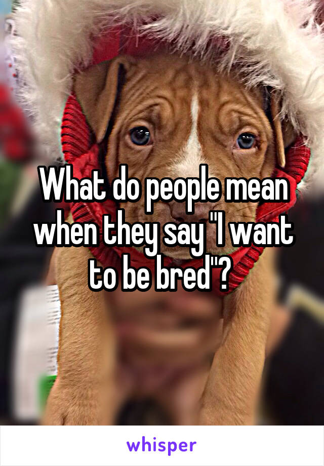 """What do people mean when they say """"I want to be bred""""?"""