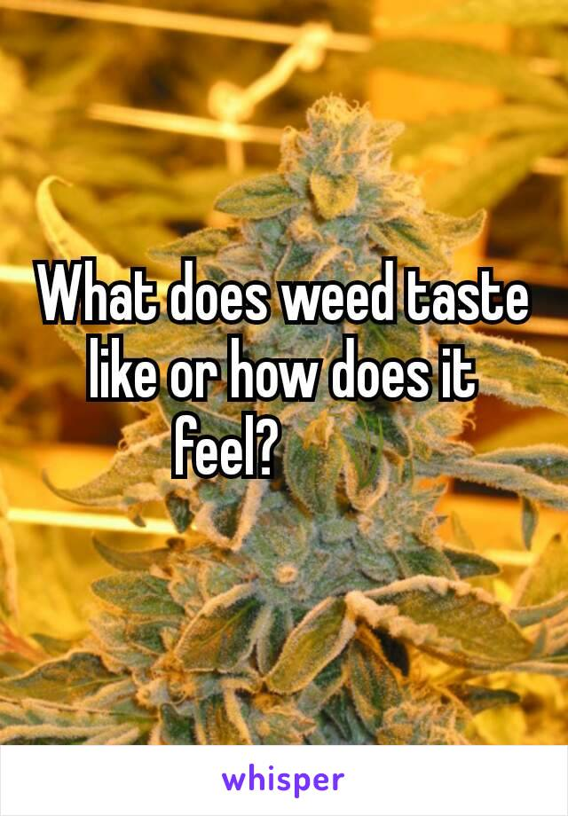 What does weed taste like or how does it feel? 🌾