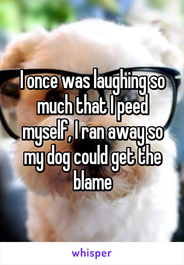 I once was laughing so much that I peed myself, I ran away so my dog could get the blame