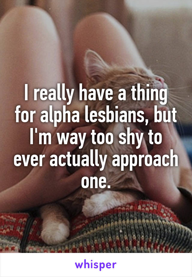I really have a thing for alpha lesbians, but I'm way too shy to ever actually approach one.