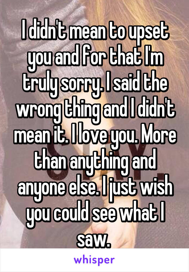 I didn't mean to upset you and for that I'm truly sorry. I said the wrong thing and I didn't mean it. I love you. More than anything and anyone else. I just wish you could see what I saw.