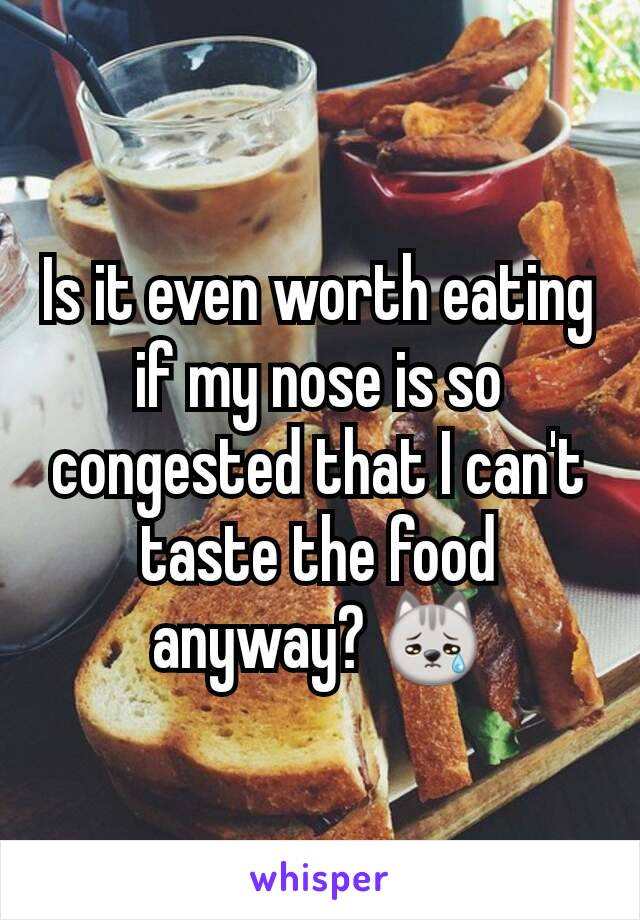 Is it even worth eating if my nose is so congested that I can't taste the food anyway? 😿