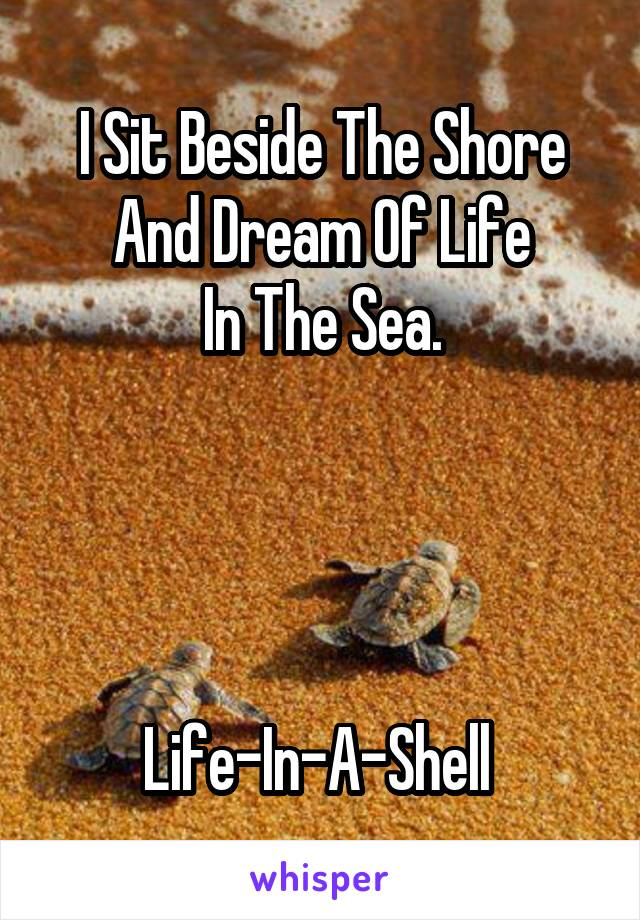 I Sit Beside The Shore And Dream Of Life In The Sea.     Life-In-A-Shell