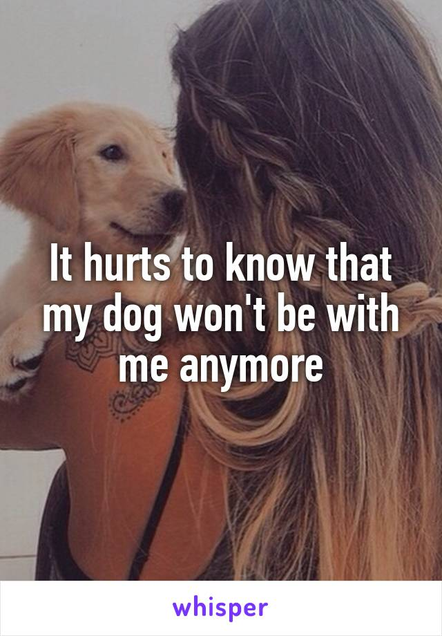 It hurts to know that my dog won't be with me anymore
