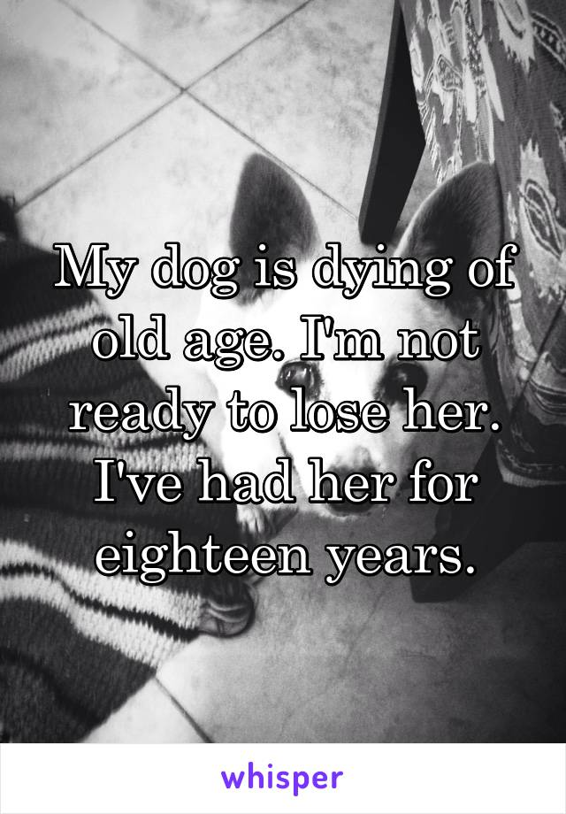 My dog is dying of old age. I'm not ready to lose her. I've had her for eighteen years.