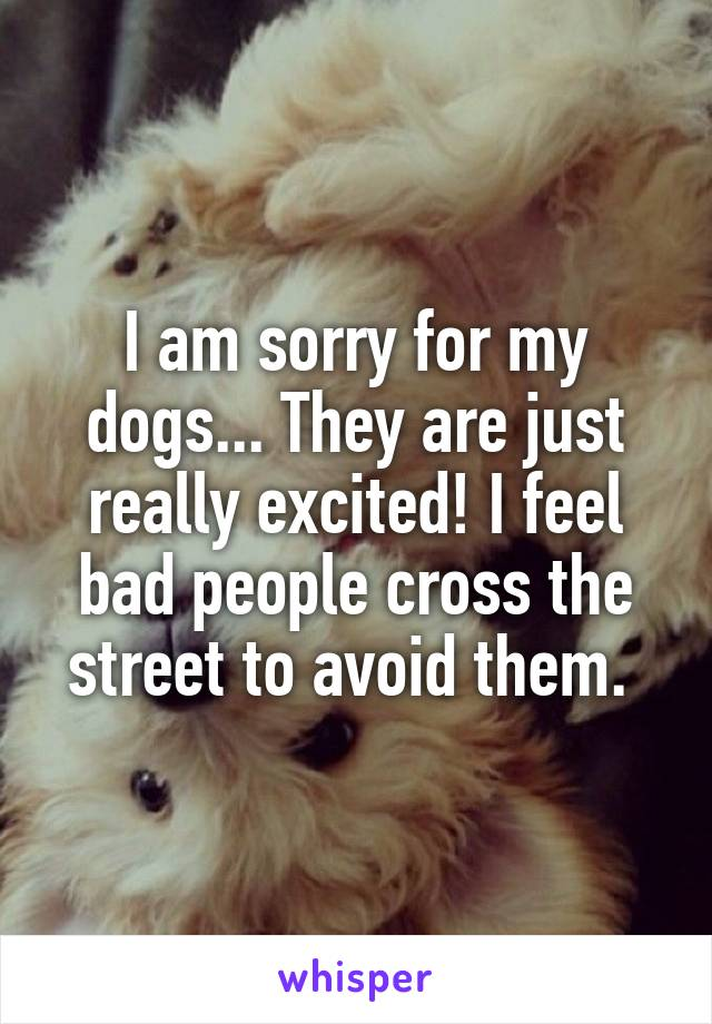 I am sorry for my dogs... They are just really excited! I feel bad people cross the street to avoid them.