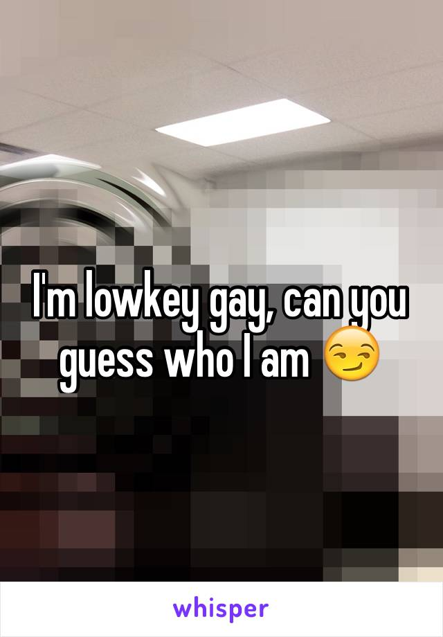 I'm lowkey gay, can you guess who I am 😏