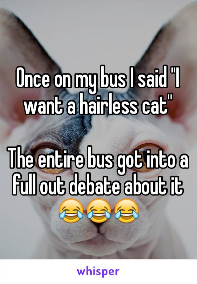 "Once on my bus I said ""I want a hairless cat""  The entire bus got into a full out debate about it 😂😂😂"