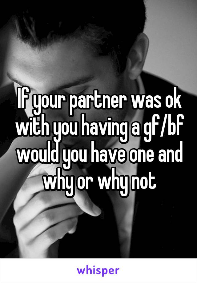 If your partner was ok with you having a gf/bf would you have one and why or why not