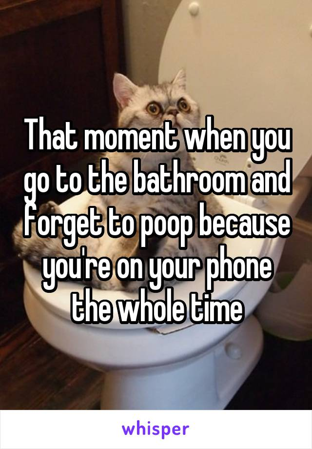 That moment when you go to the bathroom and forget to poop because you're on your phone the whole time