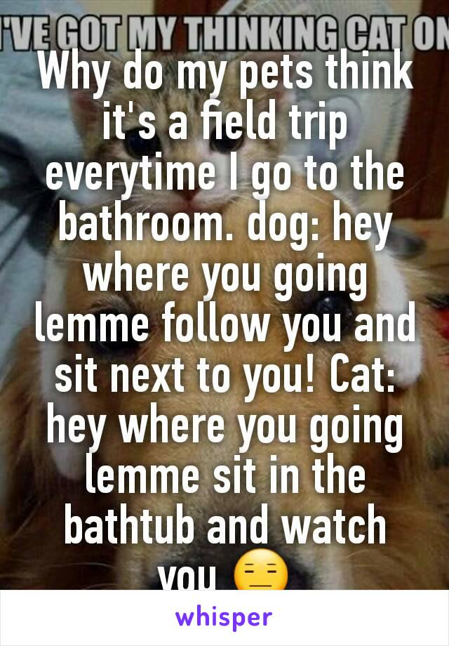 Why do my pets think it's a field trip everytime I go to the bathroom. dog: hey where you going lemme follow you and sit next to you! Cat: hey where you going lemme sit in the bathtub and watch you 😑
