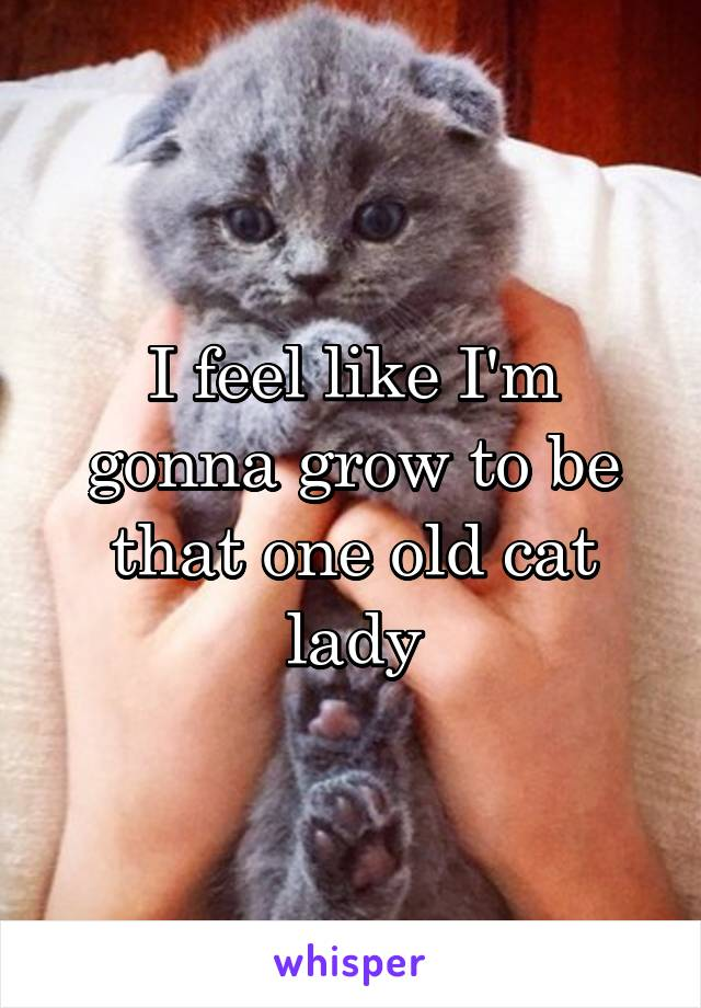 I feel like I'm gonna grow to be that one old cat lady