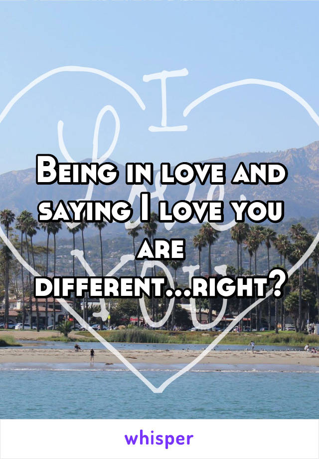 Being in love and saying I love you are different...right?