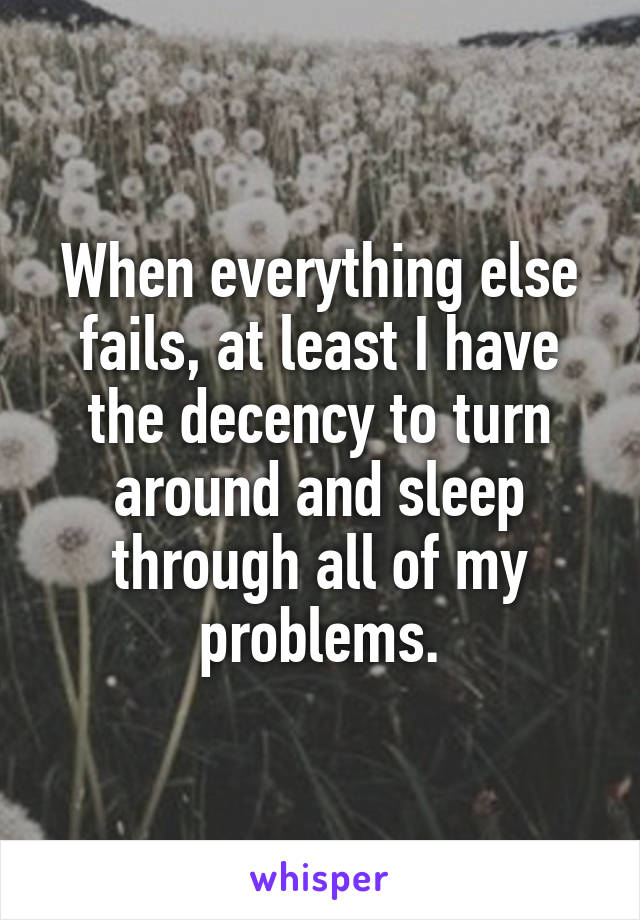 When everything else fails, at least I have the decency to turn around and sleep through all of my problems.