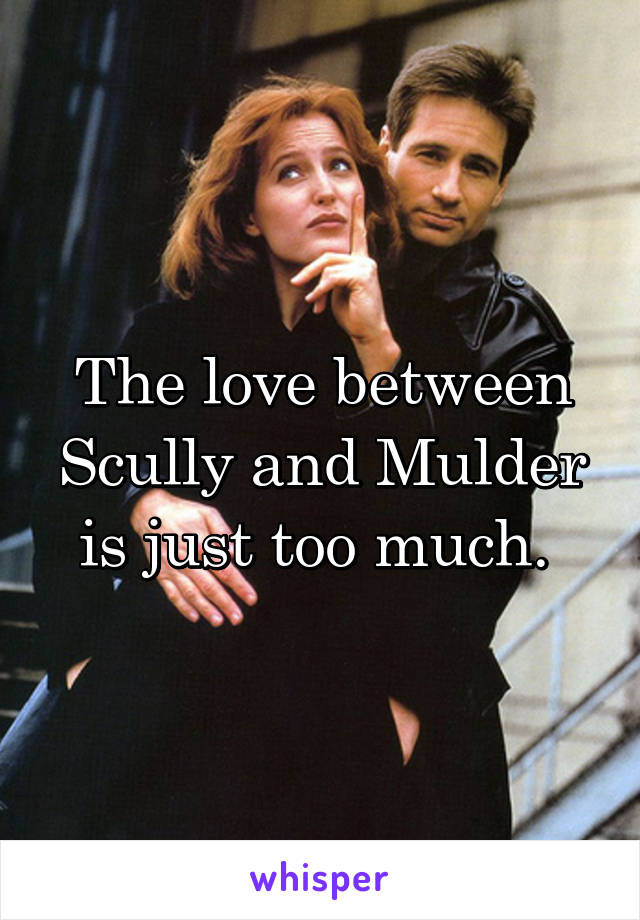 The love between Scully and Mulder is just too much.