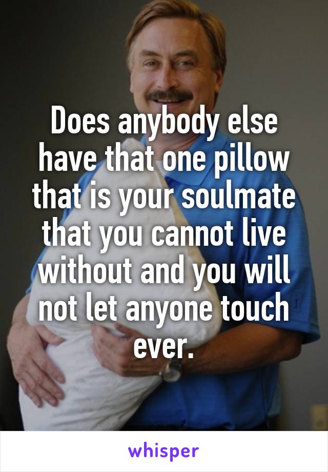 Does anybody else have that one pillow that is your soulmate that you cannot live without and you will not let anyone touch ever.