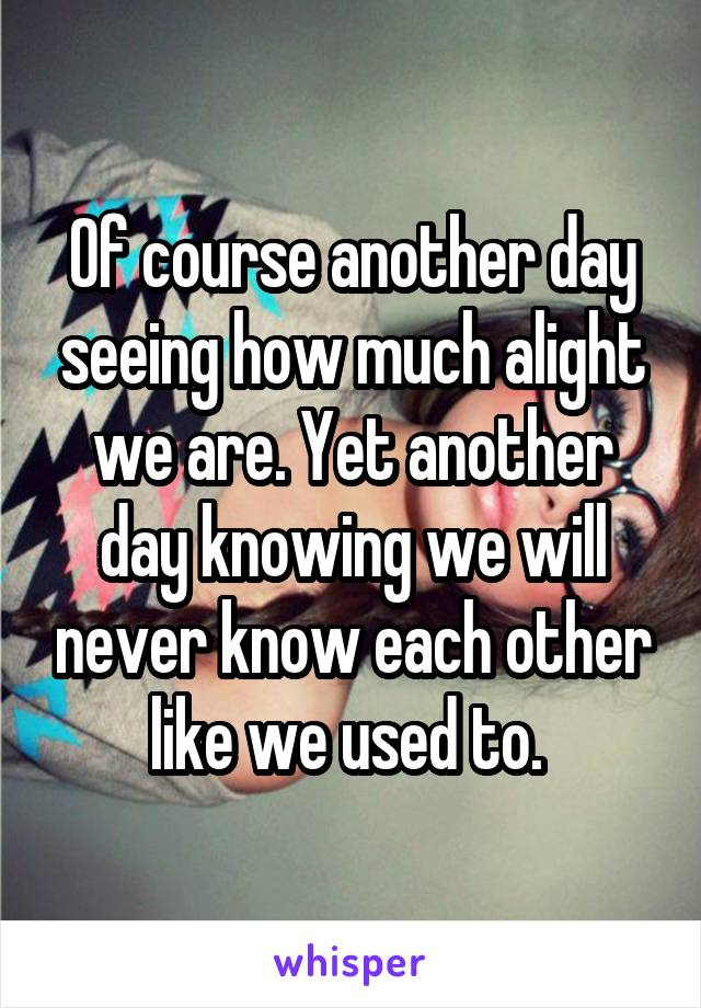 Of course another day seeing how much alight we are. Yet another day knowing we will never know each other like we used to.