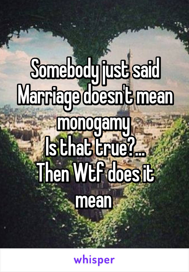 Somebody just said Marriage doesn't mean monogamy  Is that true?... Then Wtf does it mean
