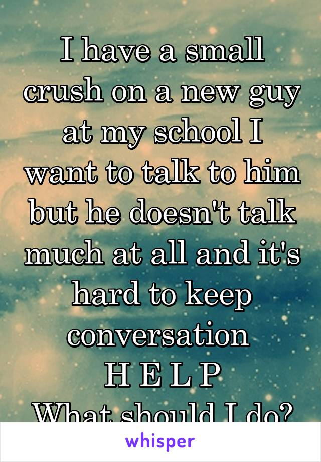 I have a small crush on a new guy at my school I want to talk to him but he doesn't talk much at all and it's hard to keep conversation  H E L P What should I do?
