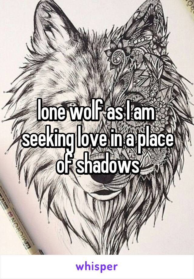 lone wolf as I am  seeking love in a place of shadows