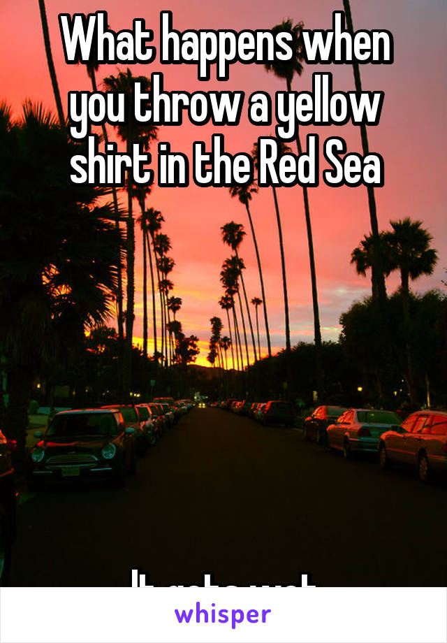 What happens when you throw a yellow shirt in the Red Sea       It gets wet