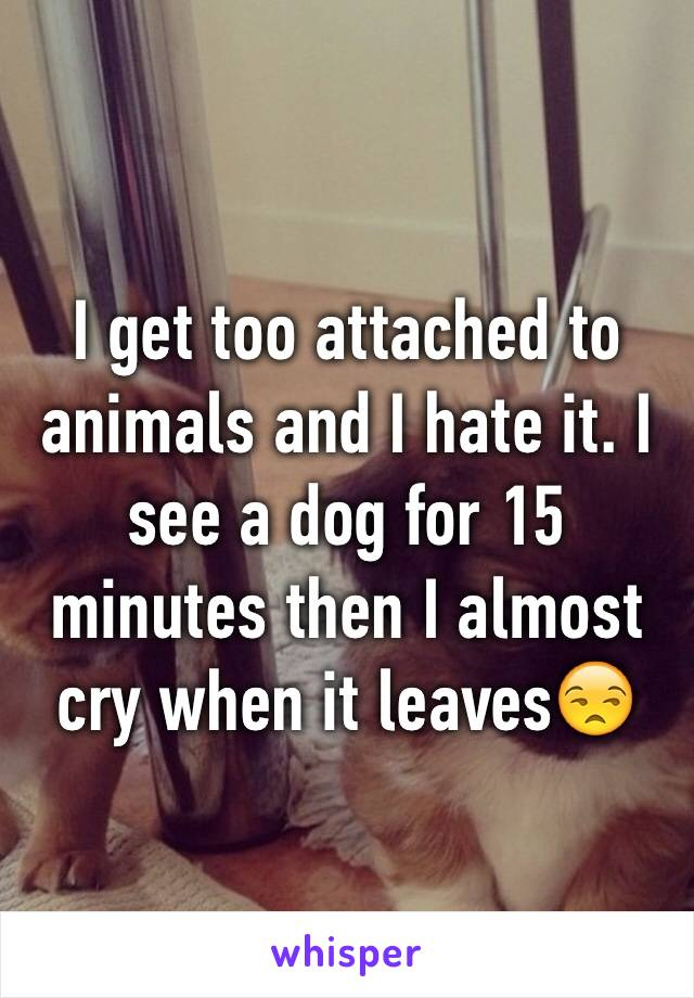I get too attached to animals and I hate it. I see a dog for 15 minutes then I almost cry when it leaves😒