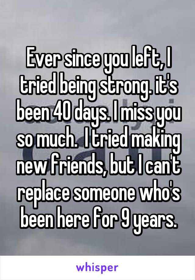 Ever since you left, I tried being strong. it's been 40 days. I miss you so much.  I tried making new friends, but I can't replace someone who's been here for 9 years.
