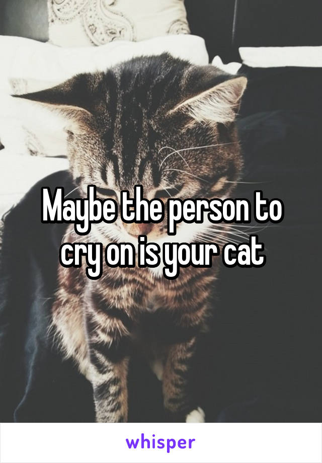 Maybe the person to cry on is your cat