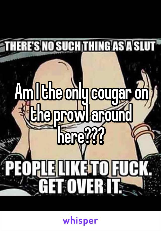 Am I the only cougar on the prowl around here???
