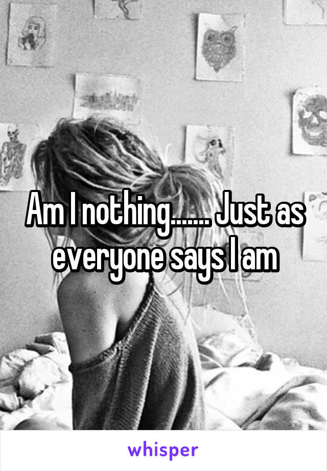 Am I nothing....... Just as everyone says I am