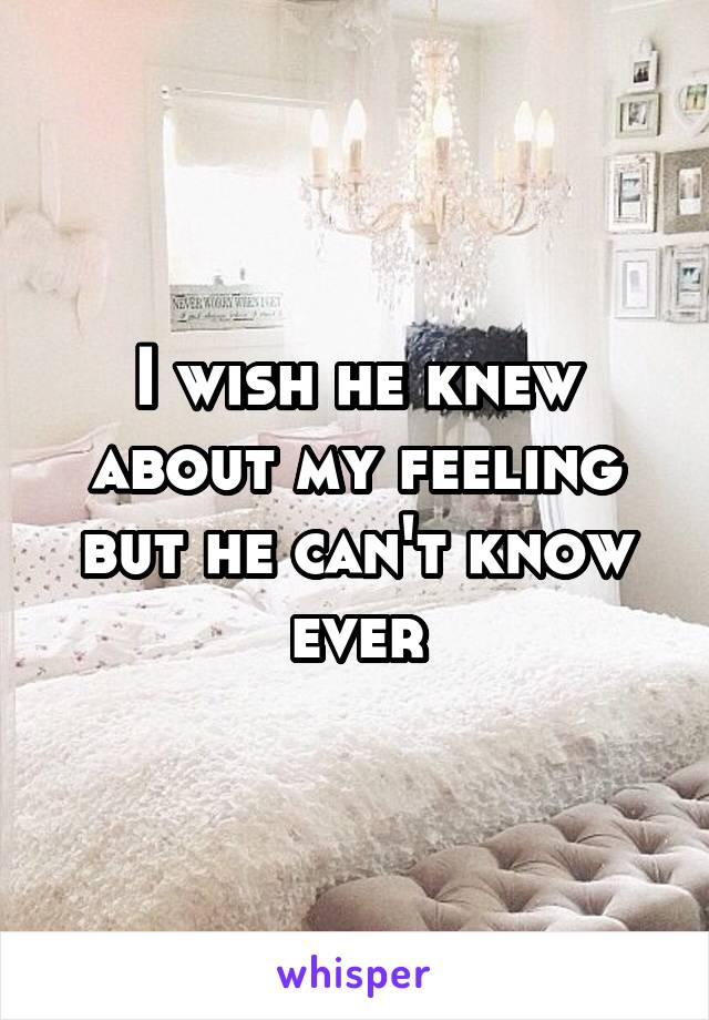 I wish he knew about my feeling but he can't know ever