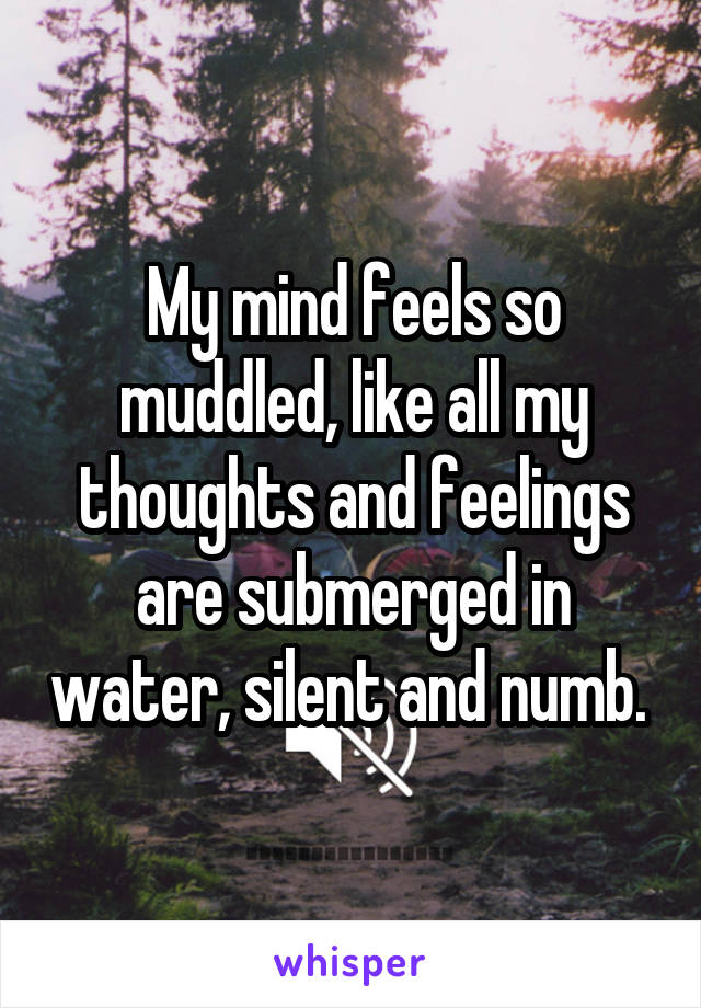 My mind feels so muddled, like all my thoughts and feelings are submerged in water, silent and numb.