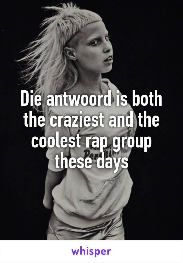 Die antwoord is both the craziest and the coolest rap group these days