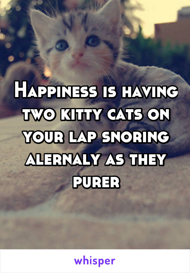 Happiness is having two kitty cats on your lap snoring alernaly as they purer