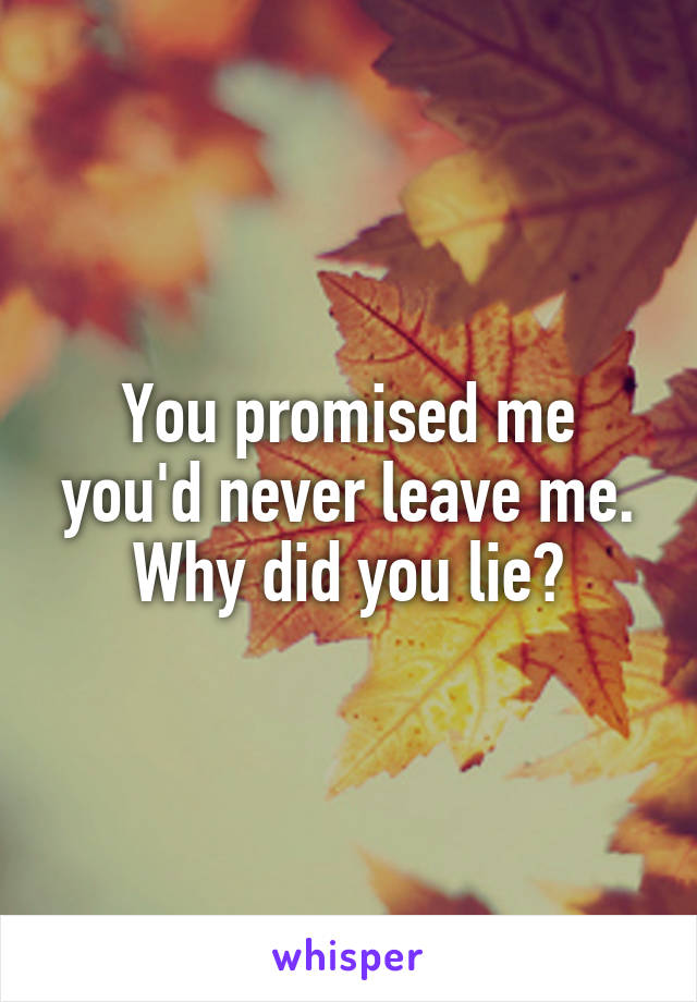 You promised me you'd never leave me. Why did you lie?