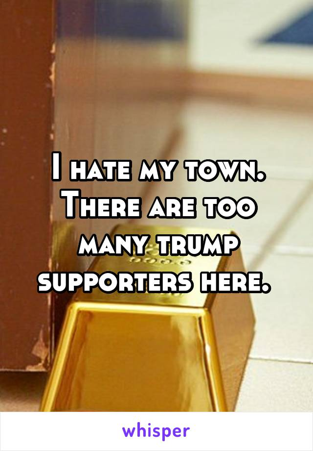 I hate my town. There are too many trump supporters here.