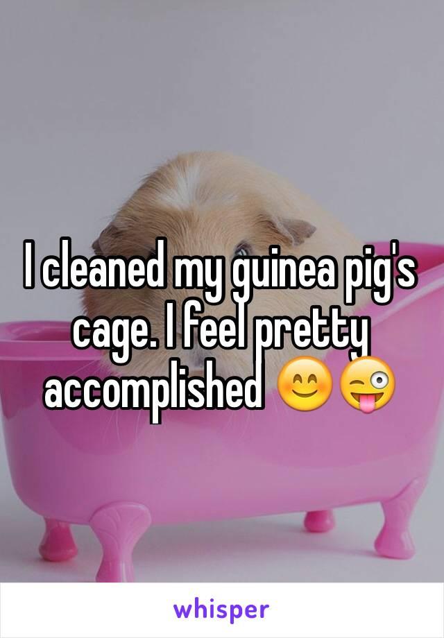 I cleaned my guinea pig's cage. I feel pretty accomplished 😊😜