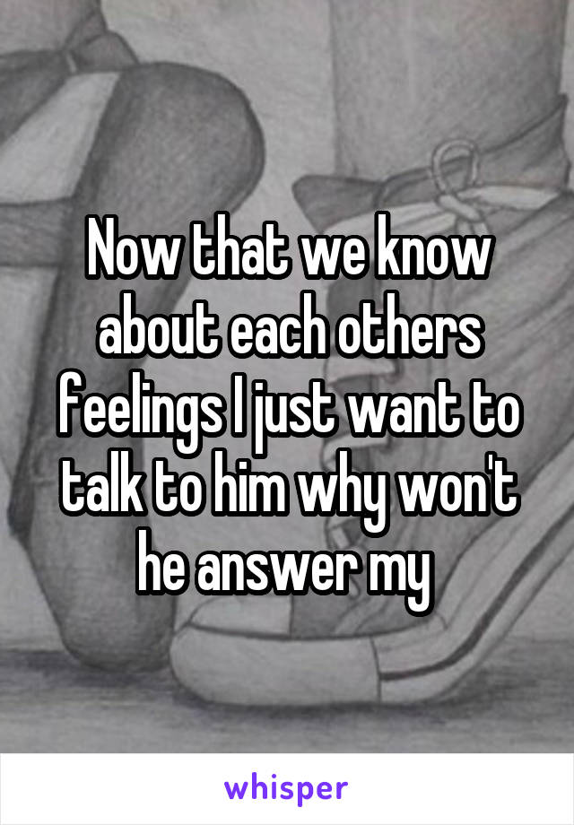 Now that we know about each others feelings I just want to talk to him why won't he answer my