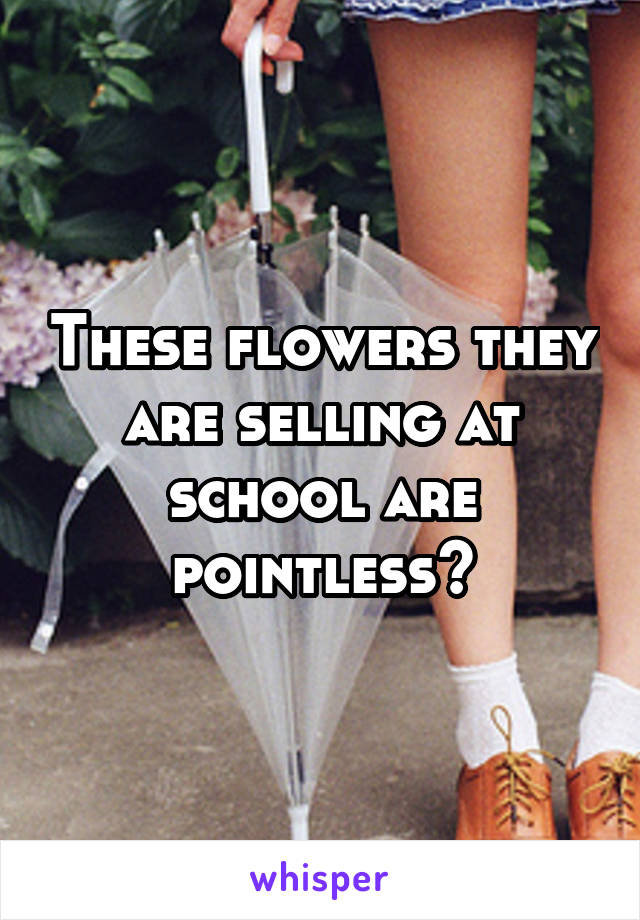These flowers they are selling at school are pointless😂