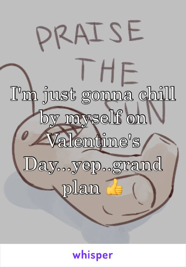 I'm just gonna chill by myself on Valentine's Day...yep..grand plan 👍