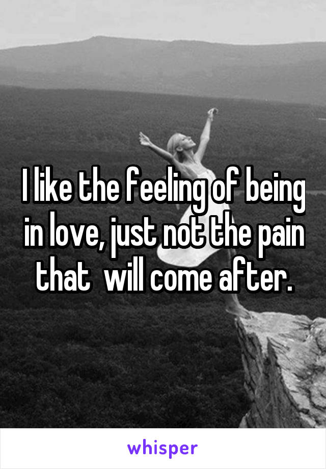 I like the feeling of being in love, just not the pain that  will come after.