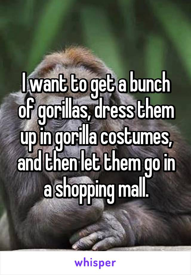 I want to get a bunch of gorillas, dress them up in gorilla costumes, and then let them go in a shopping mall.