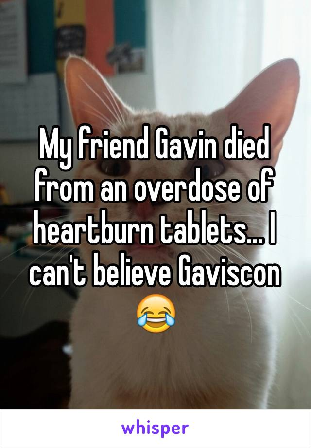 My friend Gavin died from an overdose of heartburn tablets... I can't believe Gaviscon 😂