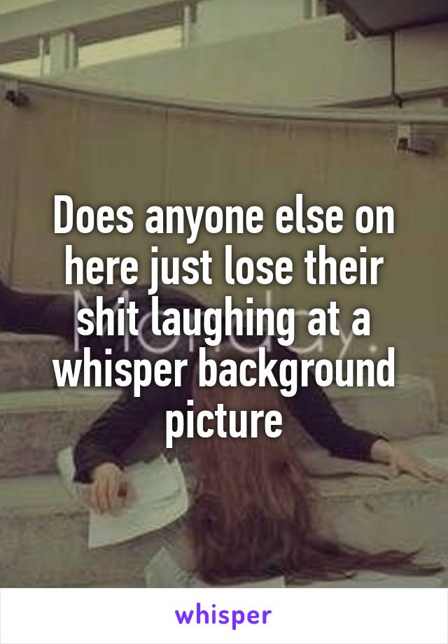 Does anyone else on here just lose their shit laughing at a whisper background picture